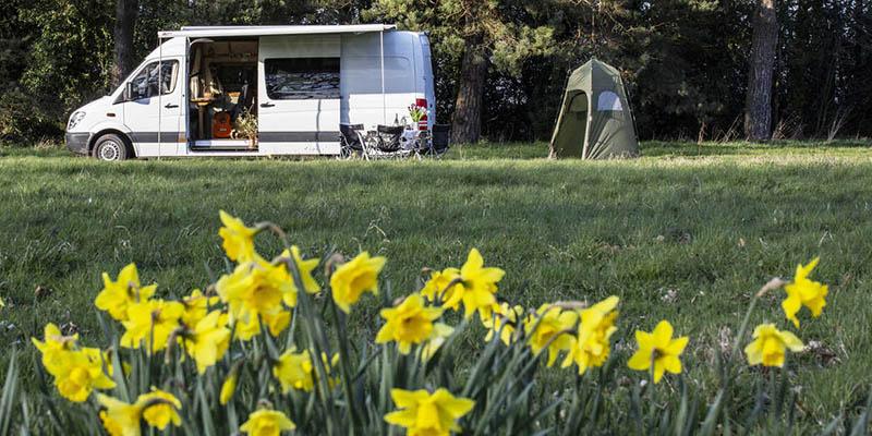 Camper Park Czarny Potok