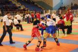 Galeria zdjęć z Mistrzostw Europy Kadetów i Juniorów w Kickboxingu - wstęp