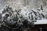 Piękny zimowy weekend w Krynicy