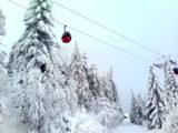 Zima na Jaworzynie Krynickiej - zdjęcia - wstęp